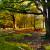 16. Panoramica_Parco Taburno - Camposauro, località Santa Barbara